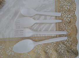 Biodegradable spoons